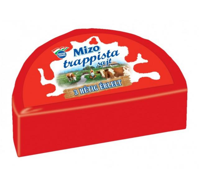 Mizo felezett sajttömb trappista