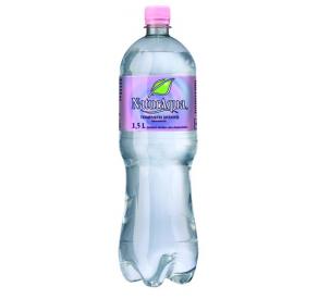 Natur Aqua ásványvíz 1,5 L mentes